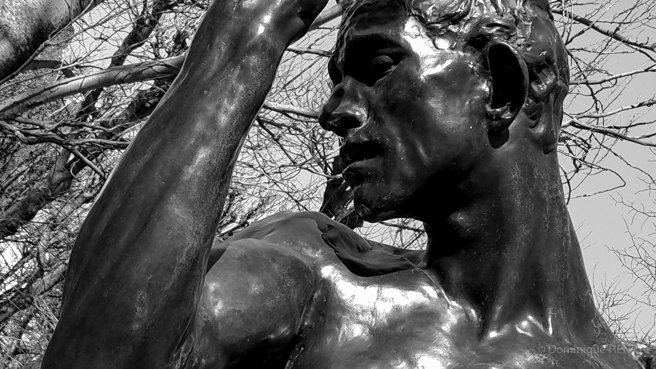 Musée Rodin - sculpture-140623
